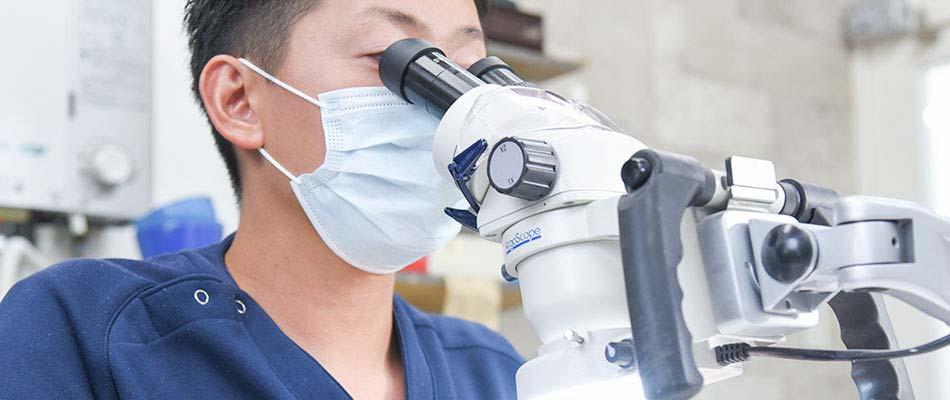 歯科技工作業