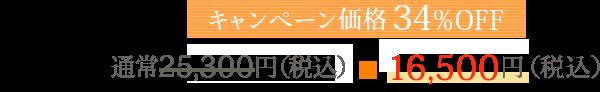 通常16,200円(税込)→初回特典10,800円(税込)